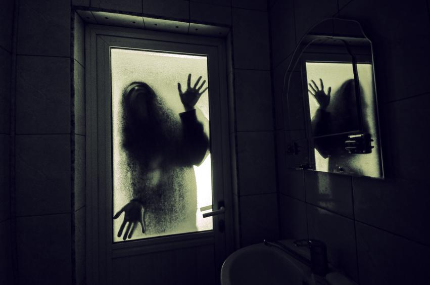 幽霊の正体…。「電磁波」や「有害物質」や「真菌(カビ)」や「深層筋肉の硬直」も関係ある場合も。幽霊の正体のほとんどは「変性意識状態での幻覚」。変性意識状態の時は潜在意識(無意識)への刷り込みがされやすい。