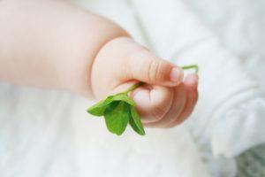 子は天からの授かりもの!そして子は鎹!子は親に気づきを与えるために生まれてきた