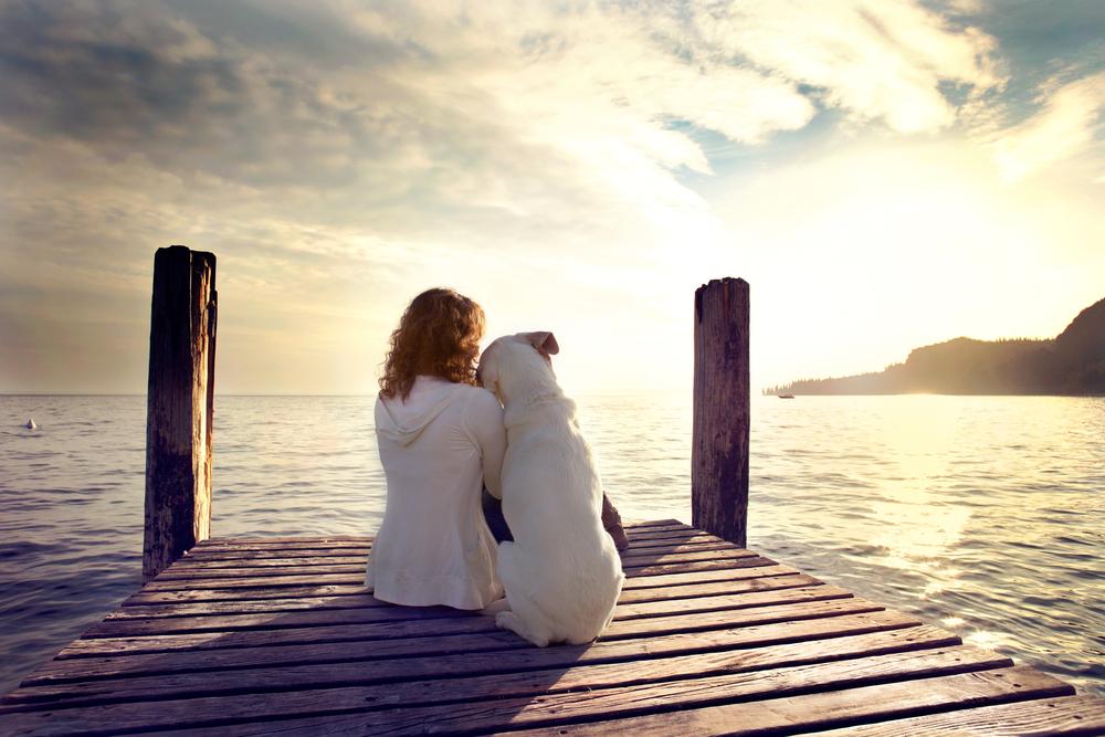 """「友人」は「教師」であり「美しい敵」なのです。その「敵」が""""どう出てくるかはあなた次第""""です。"""