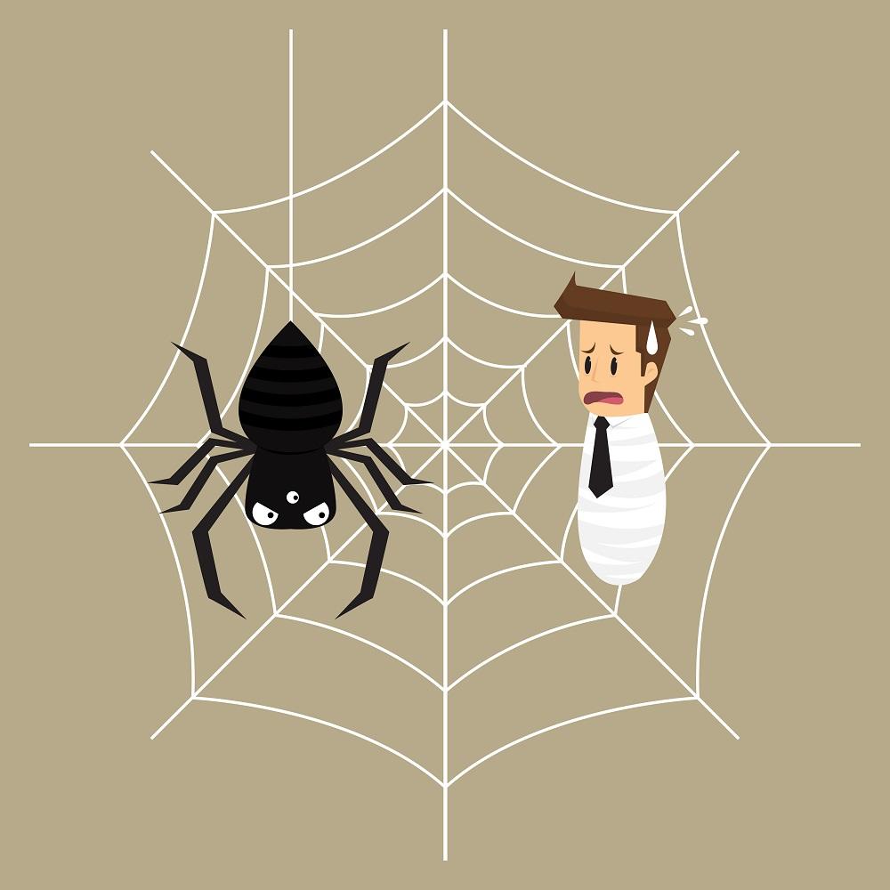 はめられる夢を見ていませんか?人は蜘蛛の巣の罠にかかっているのに気づかない…。そして、ゆっくりと雁字搦めになっていく。まさに茹でガエルのごとく気づいたときには遅い場合もあるのです。