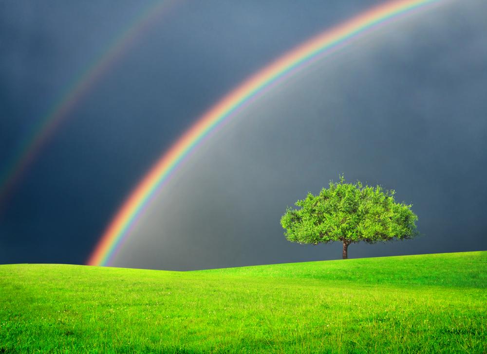 二本の虹を見てから、頻繁にゾロ目を見るようになった!ユングのシンクロニシティ