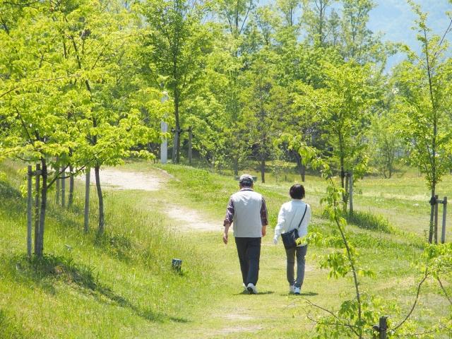 健康的な生活のために!厳しい審査を通過した【ドクターズチョイス】天然植物性トリプトファン 500mg(植物性)を摂取してセロトニンを増やそう!
