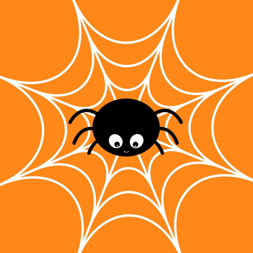 蜘蛛恐怖症の原因の1つ。僕の蜘蛛恐怖症が治った方法とは。