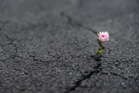 心が傷つくとき…、それは精神が強化されるとき。
