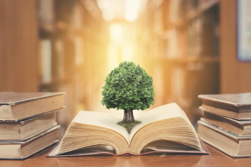 自己肯定感を高める方法(Kindle本)がAmazon.co.jpの「Prime Readingプログラムの対象本」として登録!
